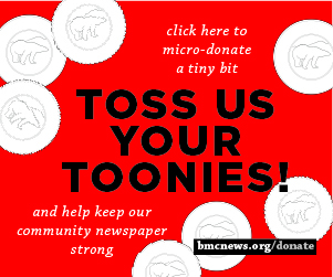 Toss Toonies - rectangle